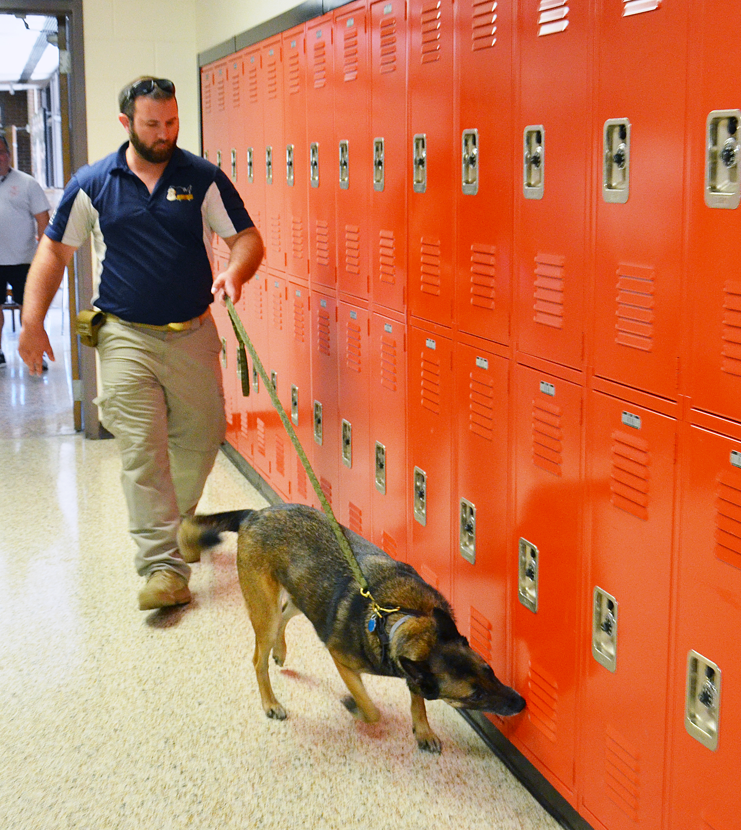 Dog searching lockers in demonstration